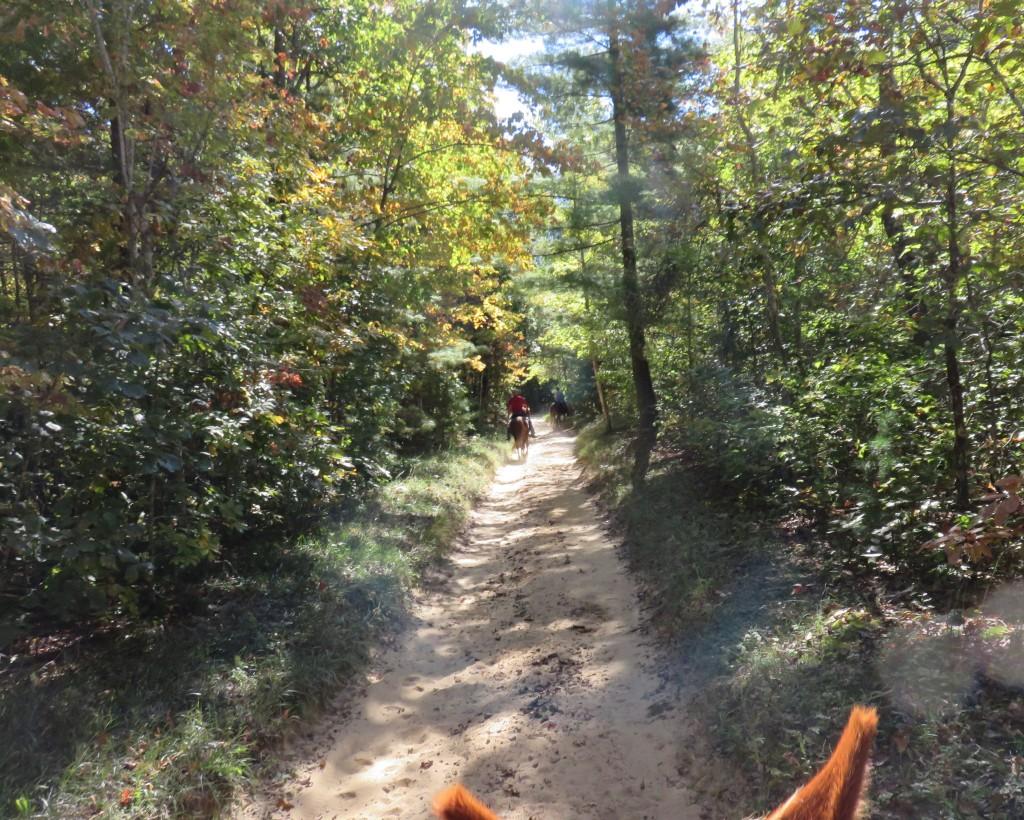 10-09-16-trail